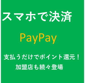 PayPay1008